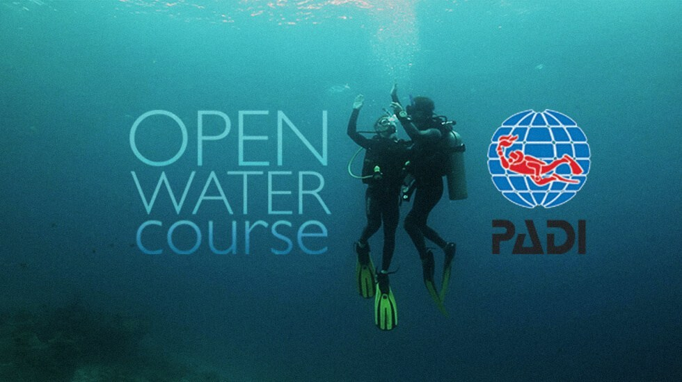PADI Open Water Course Cyprus Paphos